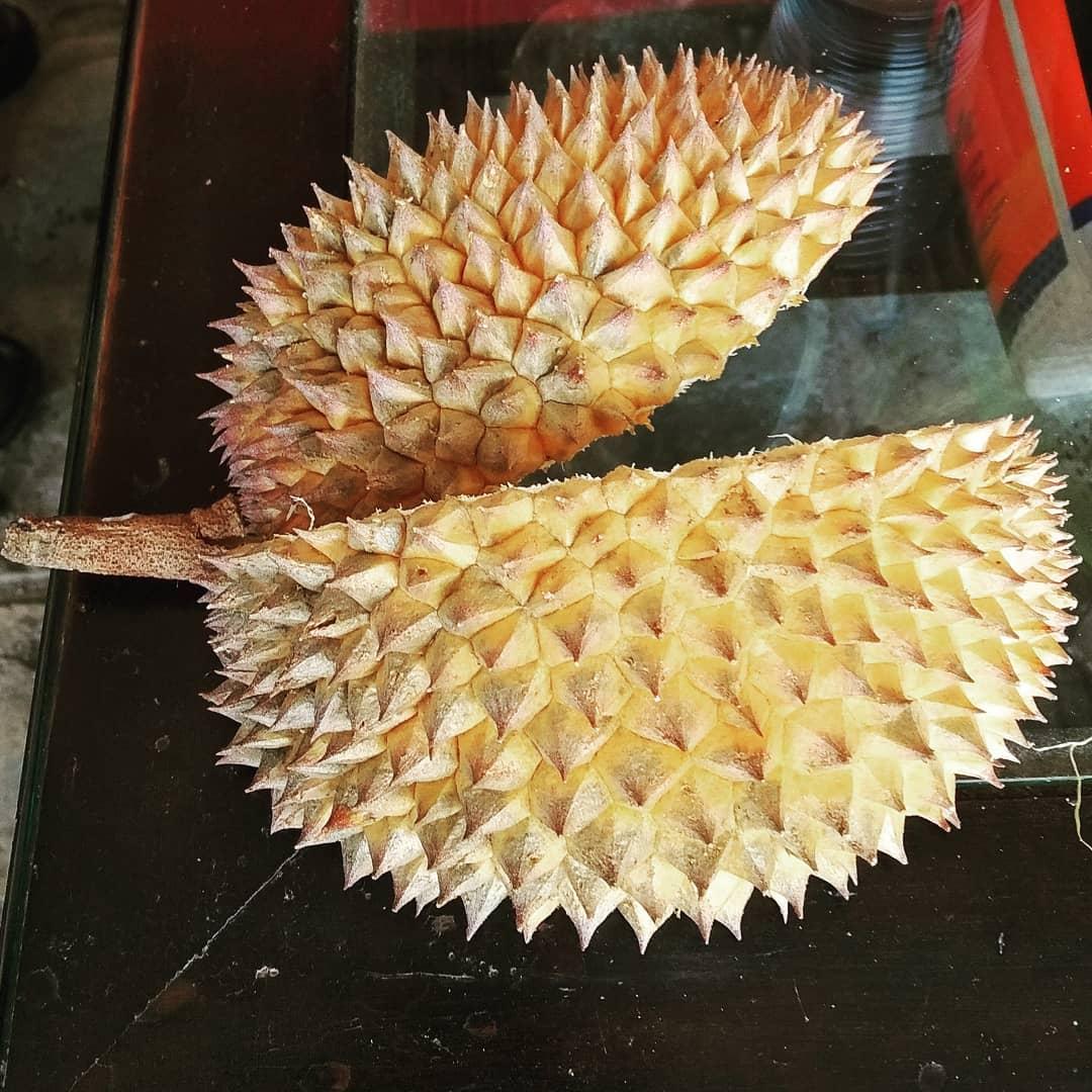 Manfaat Kulit Durian Bagi Kesehatan